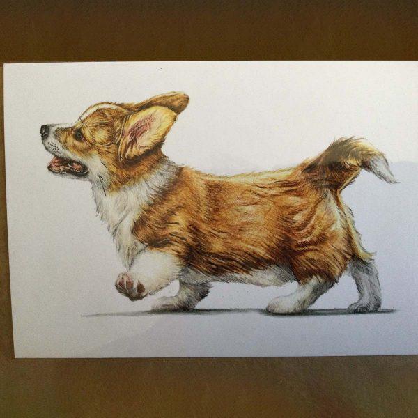 Greetings card with Corgi illustration
